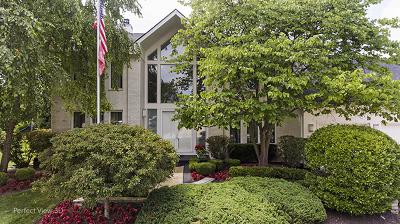 Buffalo Grove Single Family Home For Sale: 2067 Sheridan Road
