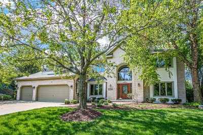 Ashbury Single Family Home For Sale: 1343 Dryden Court