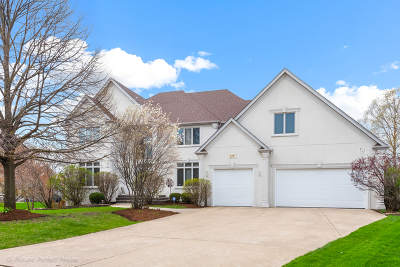 Naperville Single Family Home For Sale: 2347 Simsbury Court