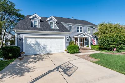 Mundelein Single Family Home For Sale: 541 Salceda Lane