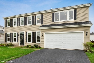 Single Family Home For Sale: 1951 Fescue Drive