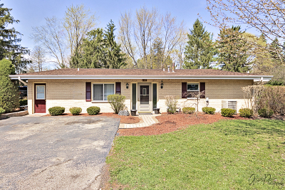 Lake Villa Single Family Home For Sale: 1317 North Cedar Lake Road