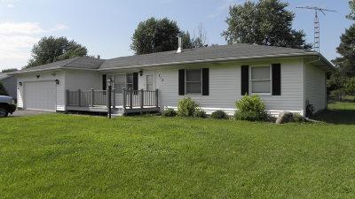 Braidwood Single Family Home For Sale: 712 West Eureka Street