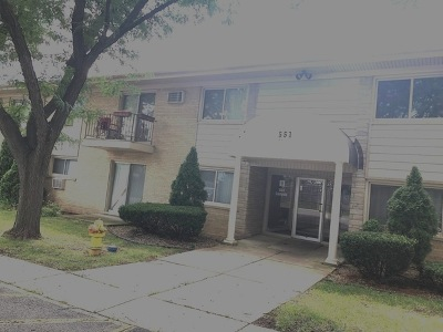 Clarendon Hills Condo/Townhouse Re-Activated: 551 Carlysle Drive #3