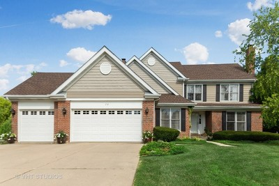 Schaumburg Single Family Home Contingent: 72 Germaine Place