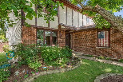 Carol Stream Single Family Home For Sale: 505 Flint Trail