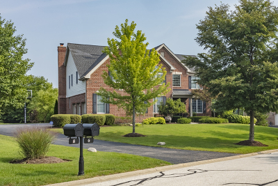 Hawthorn Woods Single Family Home For Sale: 6 Twin Eagles Court