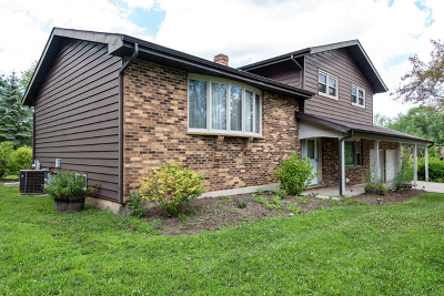 Lake Villa Single Family Home For Sale: 1406 North Cedar Lake Road