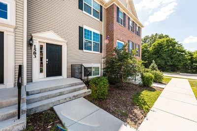 South Elgin Condo/Townhouse For Sale: 1583 Deer Pointe Drive