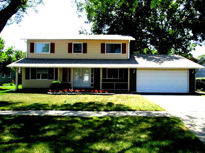 Elk Grove Village Single Family Home For Sale: 1383 Cumberland Cir West