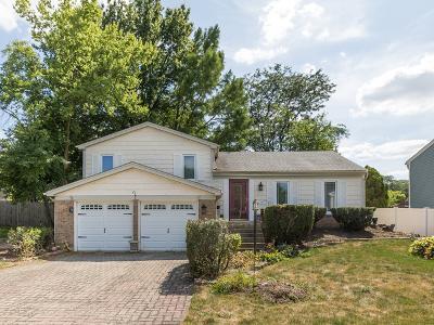 Carol Stream Single Family Home For Sale: 755 Buffalo Circle