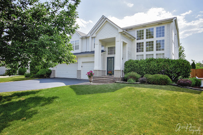 Mundelein Single Family Home For Sale: 1180 Kasting Lane