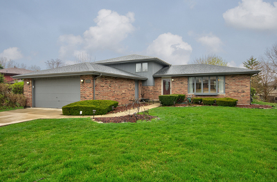 Orland Park Single Family Home For Sale: 14124 Catherine Drive