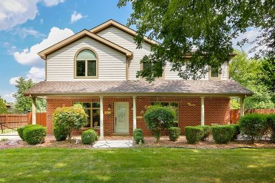 Tinley Park Single Family Home Price Change: 17155 Oleander Avenue