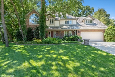 Naperville Single Family Home For Sale: 340 Great Oak Court