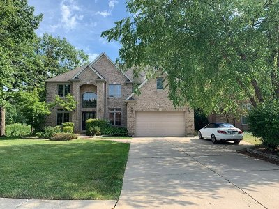 Palatine Single Family Home For Sale: 4501 Tall Trees Court