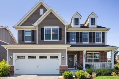 Wheaton Single Family Home For Sale: 580 Amy Lane