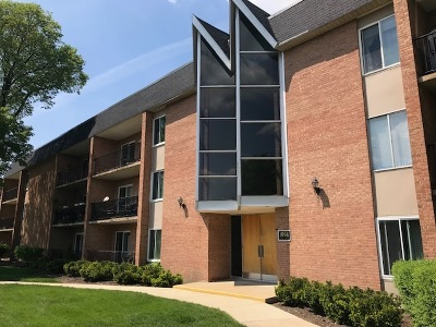 Naperville Condo/Townhouse For Sale: 1056 North Mill Street #304