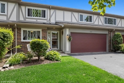 Libertyville Condo/Townhouse For Sale: 1261 Briarwood Lane
