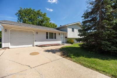 Schaumburg Single Family Home For Sale: 312 West Weathersfield Way