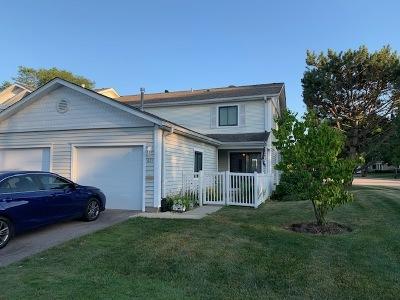 Schaumburg Condo/Townhouse For Sale: 631 Bridgeview