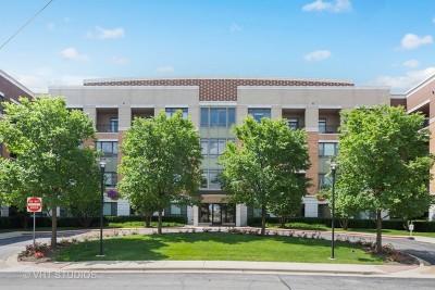 Burr Ridge Condo/Townhouse For Sale: 1000 Village Center Drive #411