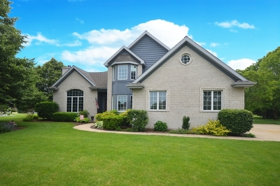 Plainfield Single Family Home For Sale: 24463 West Emyvale Court