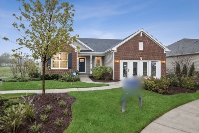Huntley Single Family Home For Sale: 11849 Hubbe Court