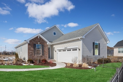 Huntley Single Family Home For Sale: 11838 Hubbe Court