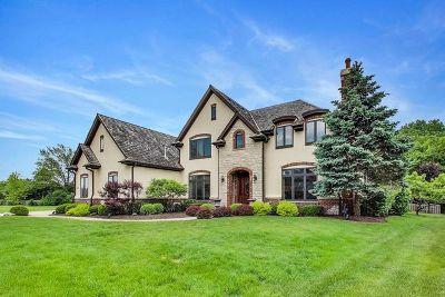 Libertyville Single Family Home For Sale: 1421 Vineyard Lane