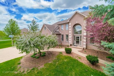 Shorewood Single Family Home For Sale: 19057 South Saddlebrook Drive