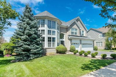 Vernon Hills Single Family Home For Sale: 1672 Haig Point Lane
