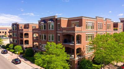 Naperville Condo/Townhouse For Sale: 180 West Benton Avenue #301
