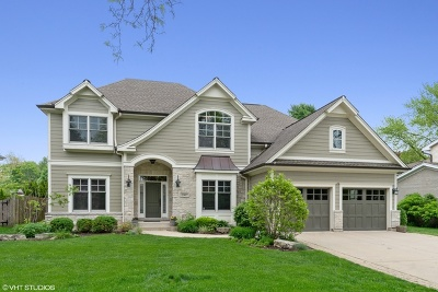 Arlington Heights Single Family Home For Sale: 1007 North Stratford Road