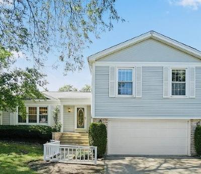 Buffalo Grove Single Family Home For Sale: 1180 Brandywyn Lane