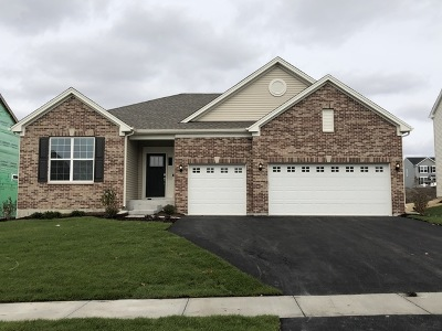 Joliet Single Family Home For Sale: 8311 Buckingham Road