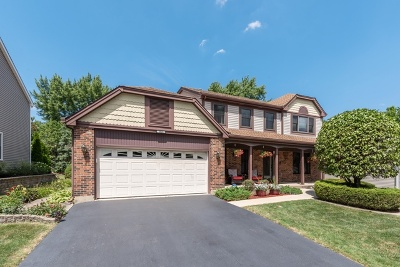 Schaumburg Single Family Home For Sale: 1626 Green River Drive