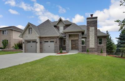Homer Glen Single Family Home Price Change: 13515 Lost Boy Lane