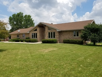 New Lenox Single Family Home For Sale: 2050 South Spencer Road