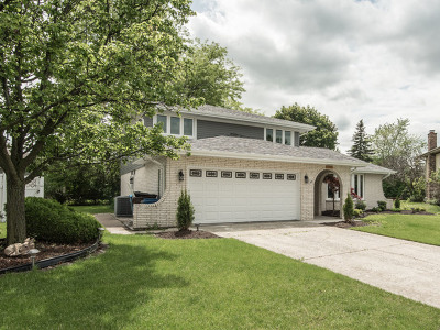 Alsip Single Family Home For Sale: 5861 West 124th Place