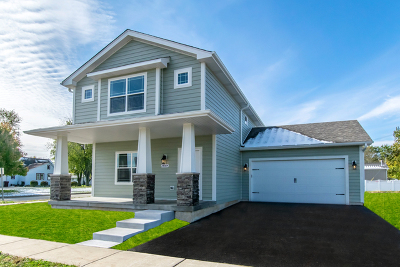 Channahon Single Family Home For Sale: 24556 South St Peters Drive