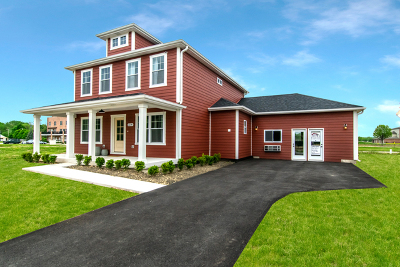 Channahon Single Family Home For Sale: 25246 West Town Center Circle