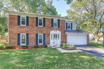 Roselle Single Family Home For Sale: 935 Brandywine Drive