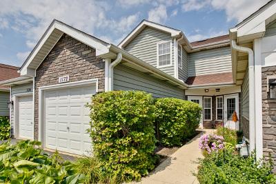 Schaumburg Condo/Townhouse For Sale: 1172 Regency Drive