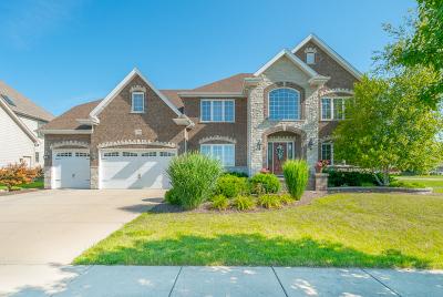 Plainfield Single Family Home For Sale: 25104 Island Drive