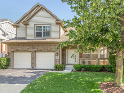 Vernon Hills Single Family Home For Sale: 1938 North Olympic Drive