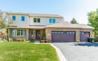 Oswego Single Family Home For Sale: 210 Fox Chase Court