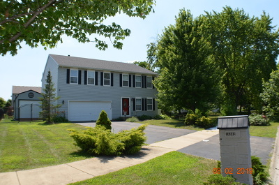 Plainfield Single Family Home For Sale: 14302 Springfield Court