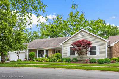 Naperville IL Condo/Townhouse For Sale: $779,000