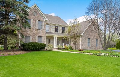 Sugar Grove Single Family Home For Sale: 993 Black Walnut Drive